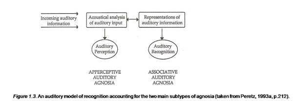 An auditory model of recognition accounting for the two main subtypes of agnosia 